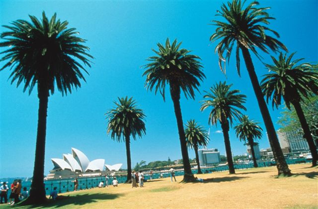 Nba Travel Packages Australia